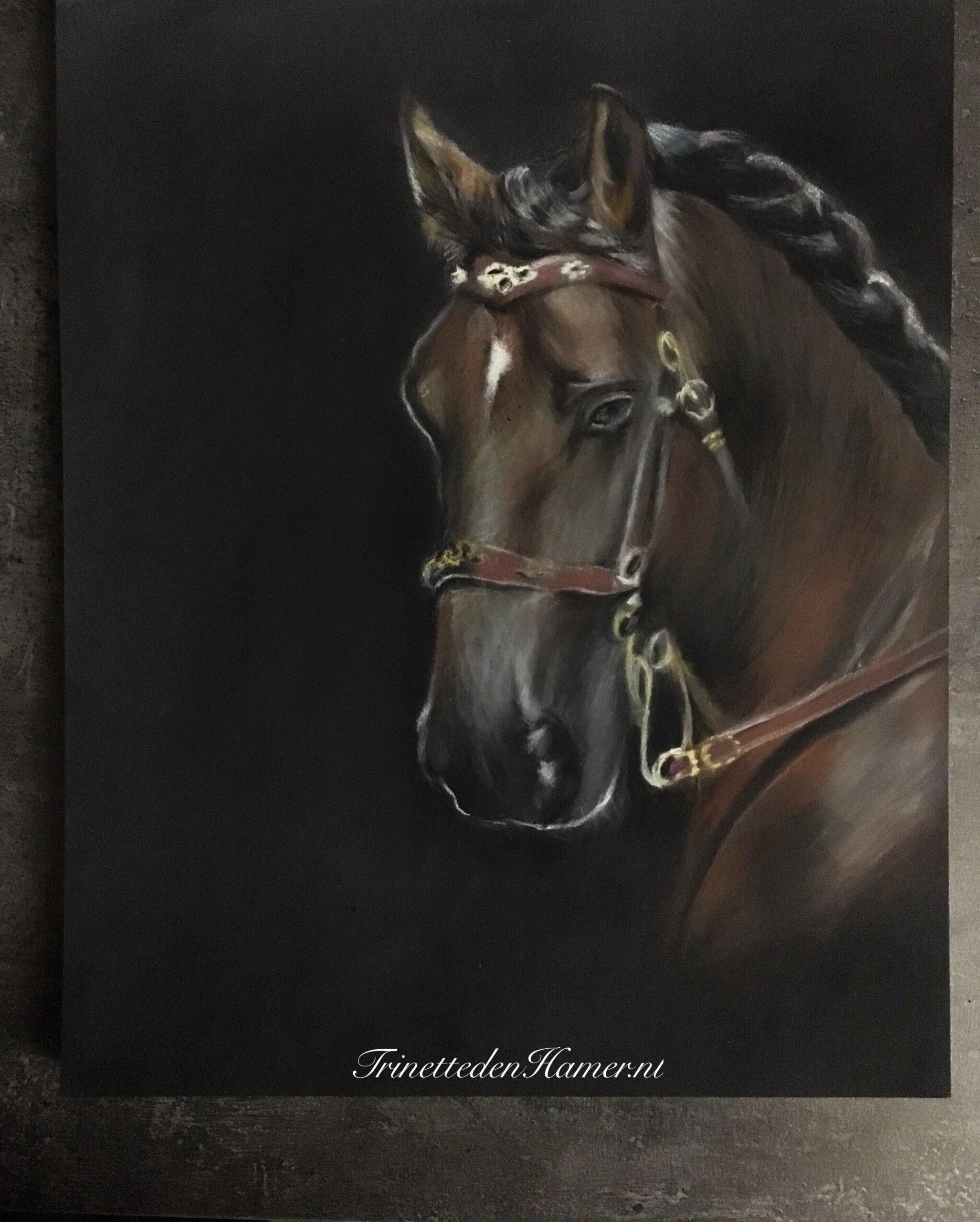 Paard in pastel